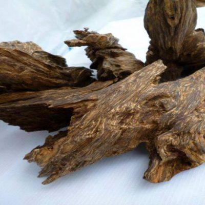Giá trầm hương bao nhiêu tiền 1kg? Giá bán trầm hương hiện nay