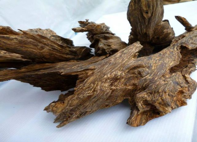 Giá 1kg trầm hương trầm hương miếng