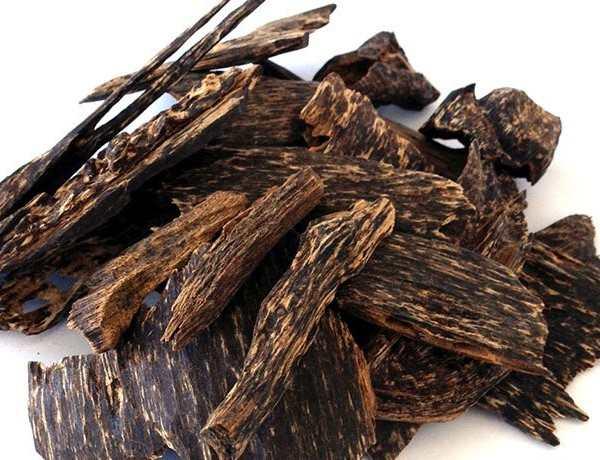 Gỗ trầm hương dùng để làm gì chữa bệnh phong thủy làm đẹp