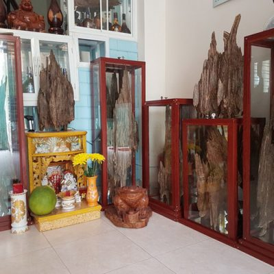 Trầm hương chục tỷ của đại gia Hà Nội
